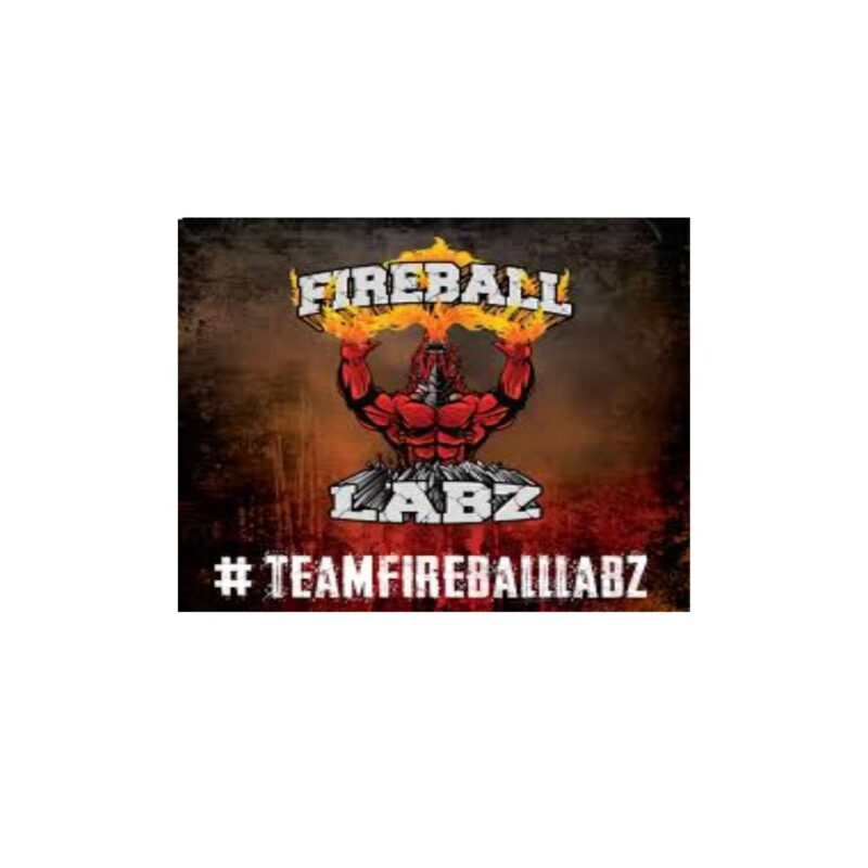fireball labs logo